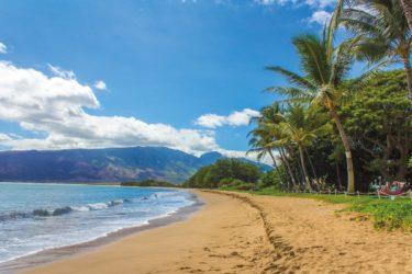 日本にいながらハワイをお取り寄せ!ハワイ気分が味わえるショップ7選